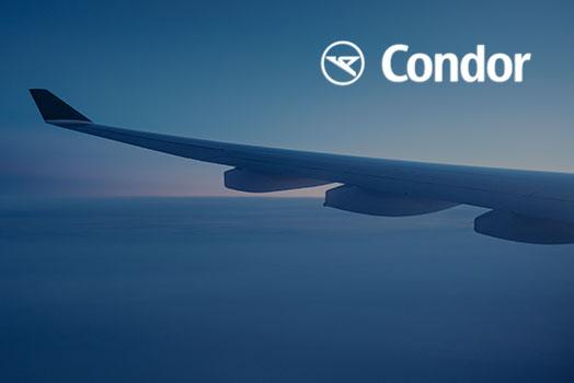 Hauptstadtkoffer Condor