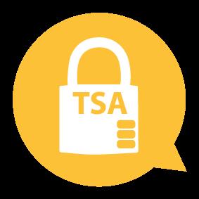 Icon TSA Schloss